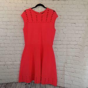 NWT Ted Baker Zaralia Skater dress Size 5 / 12